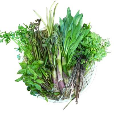天然山菜おまかせセット1kg(採取者・笑顔の里)
